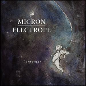micron electrope
